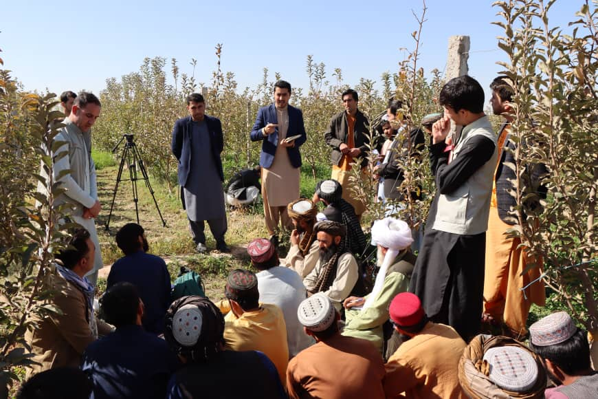 Leading Gardeners of Badghis Learned New Methods of Gardening in Herat