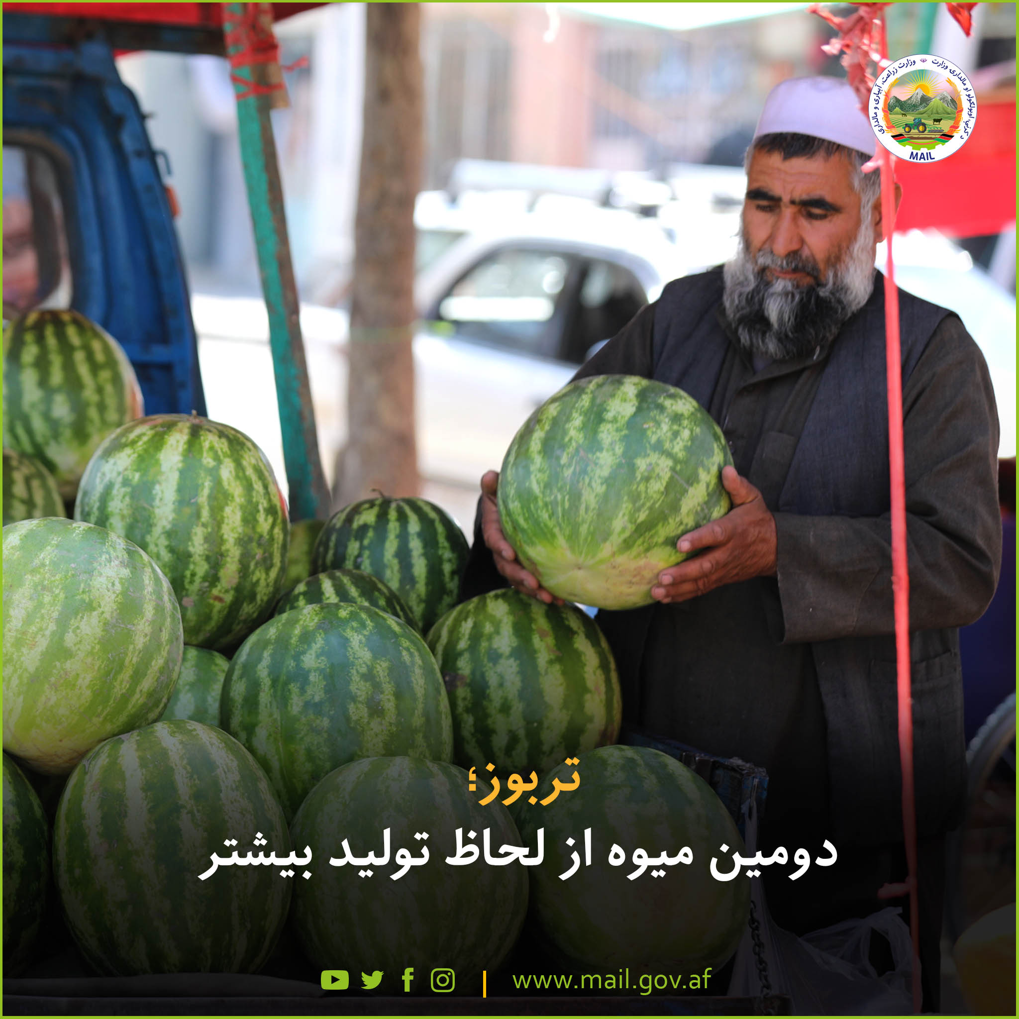 Watermelon;  Second fruit in terms of more production