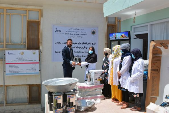 Three vegetable and fruit processing centers equipped in Balkh
